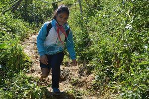 Giấc mơ đại học của cô bé 9 năm lò cò đến trường và 365 ngày tìm lại chân đã mất