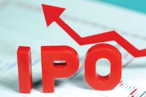 IPO không thành, nhà đầu tư kiện đòi tiền ALC1