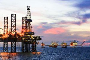 Có 'sếp' mới, cổ phiếu dầu khí vẫn lao dốc thảm hại