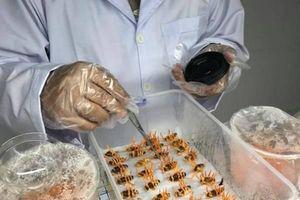 Cuộc thi về khởi nghiệp nông nghiệp với giải thưởng lên đến 220 triệu đồng