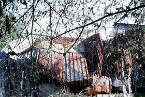 TP Hồ Chí Minh: Cháy lớn thiêu rụi 5 tấn phế liệu cùng nhiều tài sản