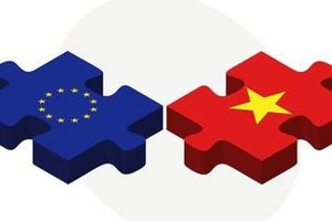 Quan hệ thương mại Việt Nam - EU