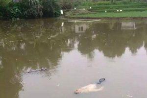 Thấy 'xác chết' nổi lềnh bềnh trên hồ, cảnh sát trục vớt lên nhưng không ngờ 'thi thể' lại phát ra tiếng ngáy