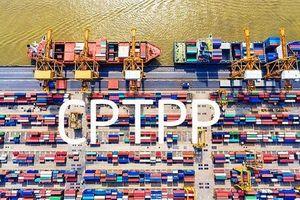 Biểu thuế xuất nhập khẩu ưu đãi đặc biệt thực hiện Hiệp định CPTPP