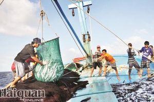 Vẫn bộn bề lo lắng gỡ 'thẻ vàng' hải sản