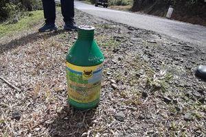 Kon Tum: Đơn vị quản lý phát quang đường bằng thuốc diệt cỏ