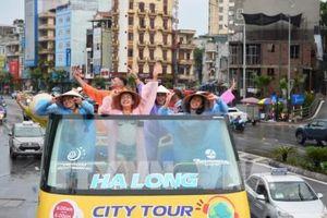 Lượng khách quốc tế đến Việt Nam có xu hướng giảm dần