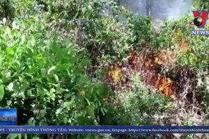 Khống chế cháy rừng dưới đường dây 500KV