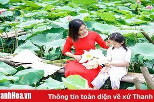 Bâng khuâng hoa sen mùa hạ