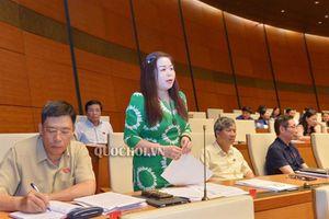 Đbqh Vũ Thị lưu mai: việc quyết định danh mục trong kế hoạch Đầu tư công thể hiện quyền và trách nhiệm của đại biểu Quốc hội trước nhân dân