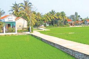 Tây Hòa - huyện đầu tiên của Phú Yên đạt chuẩn nông thôn mới