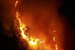 Cháy lớn ở rừng Hà Tĩnh, di dời khẩn cấp 100 hộ dân