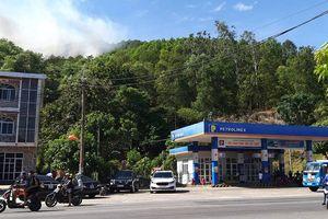 Cháy rừng ở Hà Tĩnh bùng phát trở lại, huy động 500 người dập lửa