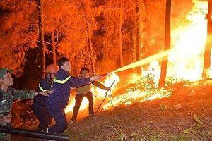 Tạm giữ một đối tượng nghi gây ra vụ cháy rừng ở Hà Tĩnh