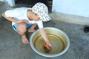 Hà Tĩnh: Bắt được lươn vàng, trả 10 triệu đồng không bán