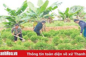 Phát huy hiệu quả các mô hình phụ nữ tự quản ở huyện Như Xuân