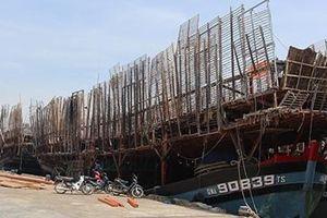 Ngư dân lao đao vì tồn kho hàng trăm tấn mực