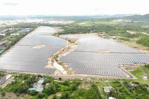 Điện Gia Lai (GEC) vận hành nhà máy điện mặt trời Trúc Sơn công suất 44,4 MWp