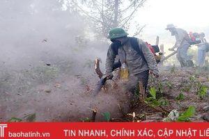 Dựng đường băng cản lửa - giải pháp cấp bách cứu rừng