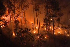 Thừa Thiên Huế: Hé lộ nguyên nhân hàng loạt vụ cháy rừng xảy ra trong cùng một ngày