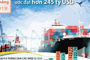 6 tháng, tổng kim ngạch xuất nhập khẩu ước đạt hơn 245 tỷ USD