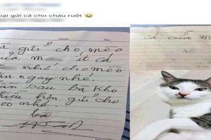 Thấy bà ngoại gửi cá kho, cháu gái đang hí hửng bỗng 'khóc ròng' vì lời nhắn của bà