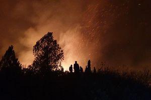 Gần 500 người trắng đêm chặn lửa tại núi Mồng Gà