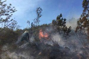 Hai người tử vong do cháy rừng tại Nghệ An