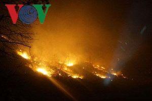 Tiếp tục cháy lớn thiêu rụi hơn 10 ha rừng thông ở Hà Tĩnh