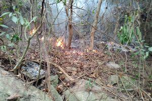 24 giờ chìm trong biển lửa, 25ha rừng ở Quảng Ngãi bị thiêu trụi