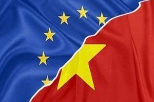 Tại sao thế giới gọi Hiệp định EVFTA là 'độc nhất vô nhị'?