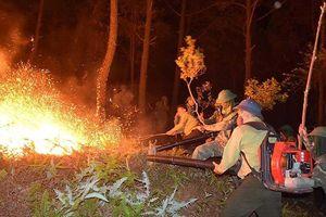 Rừng ở 5 tỉnh miền Trung bị cháy