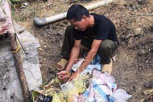 Người đốt rác gây cháy rừng ở Hà Tĩnh bị khởi tố