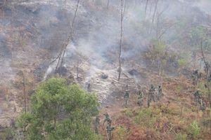 Đề nghị dùng máy bay không người lái giám sát cháy rừng