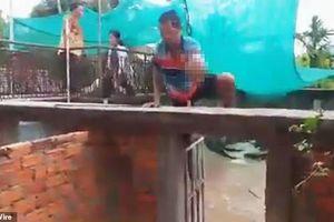 Bé gái hai tuổi bị cá sấu nuôi trong nhà cắn chết thương tâm