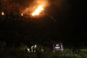 Ninh Bình: Tăng cường công tác phòng cháy chữa cháy rừng