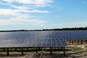 Nhà máy điện mặt trời đầu tiên tại Hà Tĩnh chính thức đi vào hoạt động