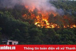 Tăng cường các biện pháp cấp bách phỏng cháy, chữa cháy rừng