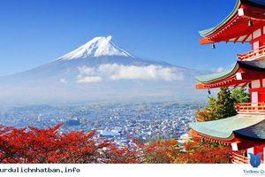 8 doanh nghiệp du lịch Việt bị 'tuýt còi' tư cách đại diện xin visa Nhật
