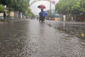 Dân Hà Tĩnh vui mừng đón những 'cơn mưa vàng' sau thảm họa cháy rừng