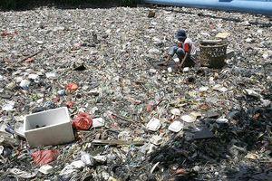 Đến lượt Indonesia trả lại rác thải cho Mỹ, Úc, Đức