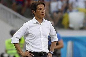 HLV Akira Nishino phủ nhận dẫn dắt đội tuyển Thái Lan