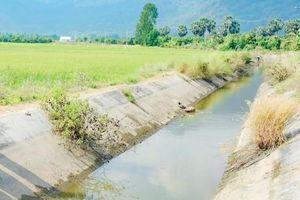 Tiền Giang vận hành hệ thống cống lấy nước ngọt cho vùng cù lao nhiễm mặn