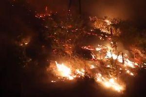 Đốt rác gây cháy rừng ở Hà Tĩnh: Bài học cho sự bất cẩn