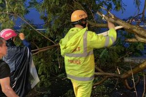 Hà Nội: Ảnh hưởng bão số 2, cây xanh đổ va vào 2 phụ nữ đi trên đường
