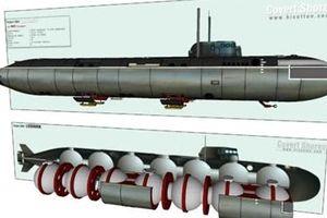 Hé lộ mẫu tàu ngầm tối mật của Nga nghi là chiếc bị cháy ở Severomorsk