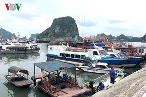 Quảng Ninh, Hải Phòng: Cấm biển, du khách ở lại Cô Tô chờ bão tan