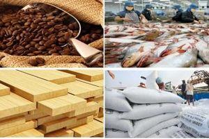 Kim ngạch xuất khẩu nông, lâm, thủy sản 6 tháng đầu năm 2019 đạt 19,8 tỷ USD
