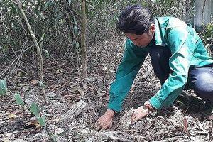 Thông tin thêm về vụ việc phát hiện hơn 300 xác thai nhi ở TP Cà Mau