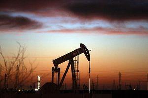 Giá dầu tăng mạnh khi dự trữ dầu không ngừng giảm
